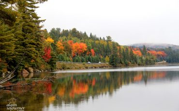 ALGONQUIN-PARK-FALL-COLOURS-LAKE-OF-TWO-RIVERS-CAMP-GROUND-1