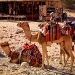 The Monastery or Little Petra in Jordan