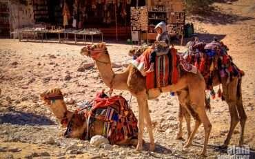 Little Petra Monastery Jordan 4