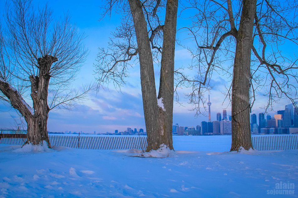 going to Toronto Island is like going to the arctic