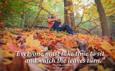 Autumn Fall Quotes