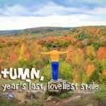 Fall Colours in Mono Cliffs