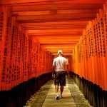 The Winding Path of Fushimi Inari Taisha