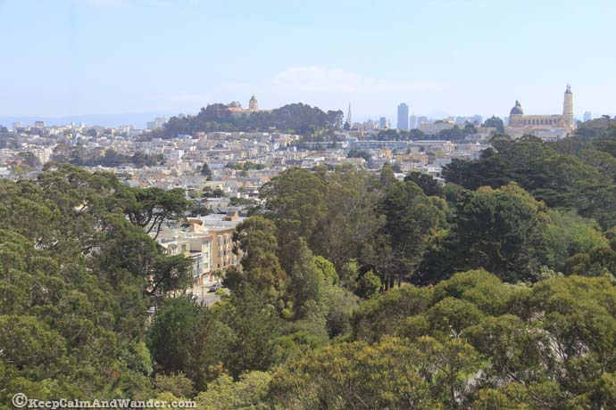 View from De Young Museum San Francisco California