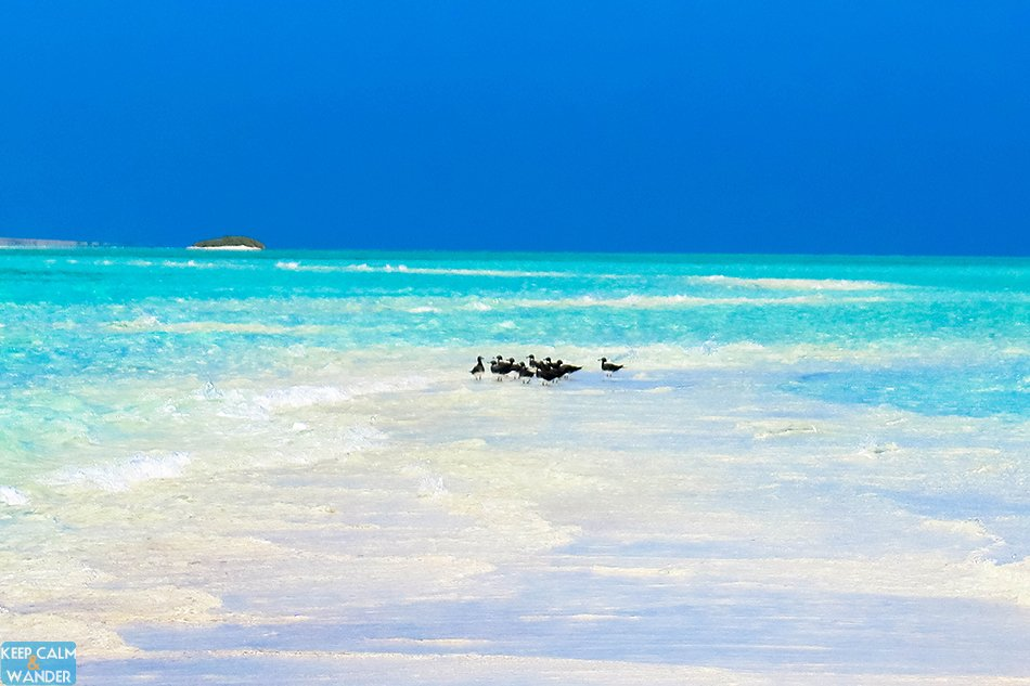 White Beach in the KSA