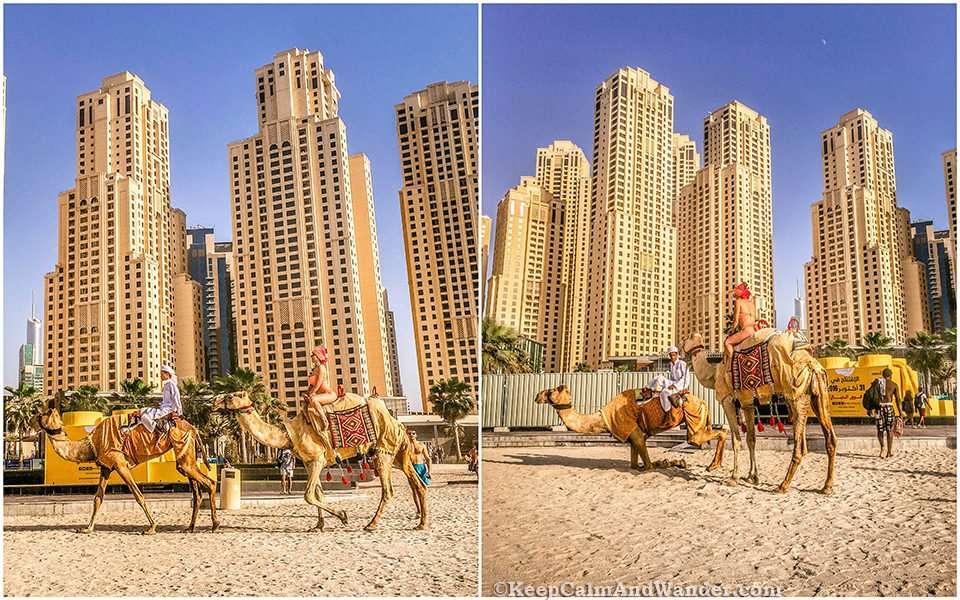 These Photos Show Dubai in a Nutshell / Jumeirah Beach.