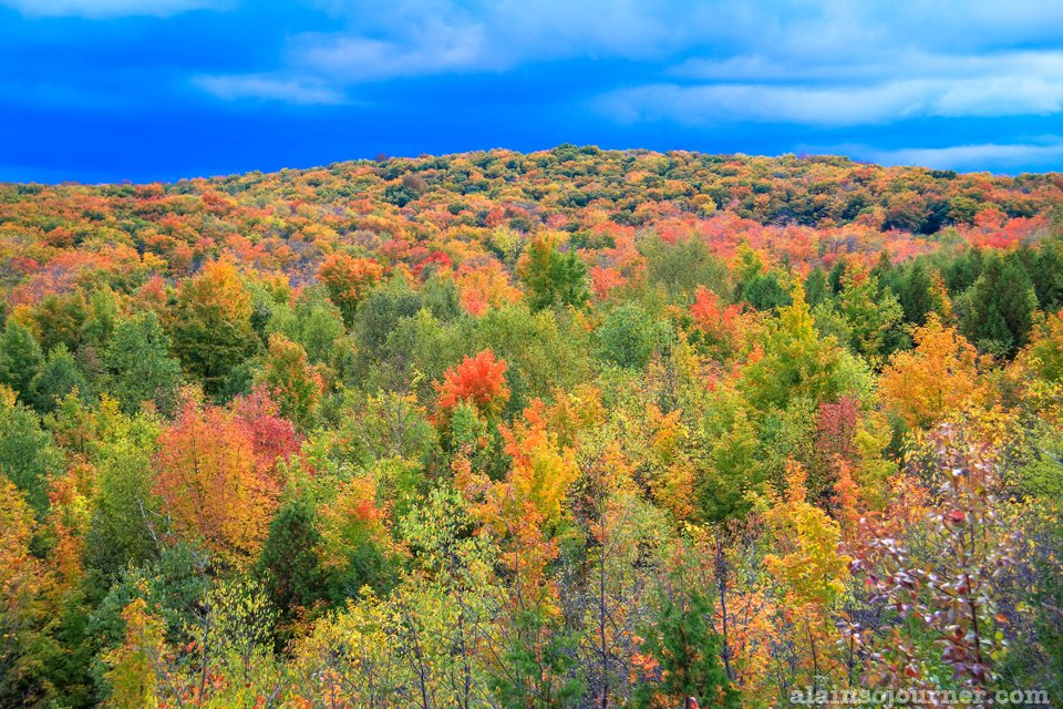 Fall Colours in Mono Cliffs, Ontario / Fall Colours in Toronto