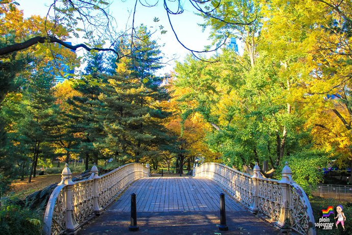 Central Park Fall Colors