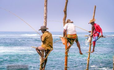 Fishermen on Stilts Sri Lanka 4