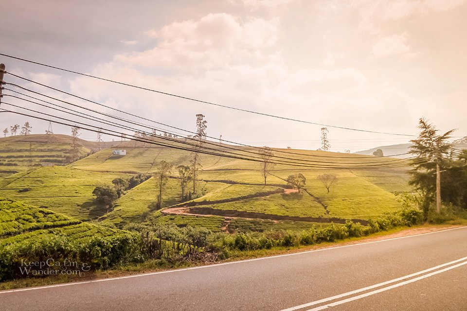 On The Road: The Scenic Drive From Kandy to Nuwara Eliya (Sri Lanka).