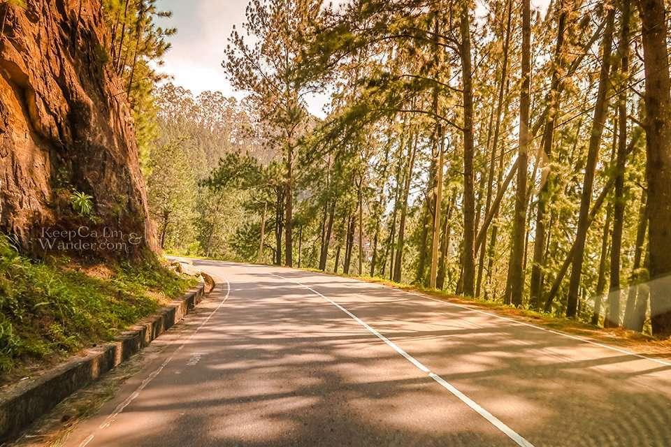 On The Road: The Scenic Ride From Kandy to Nuwara Eliya (Sri Lanka).