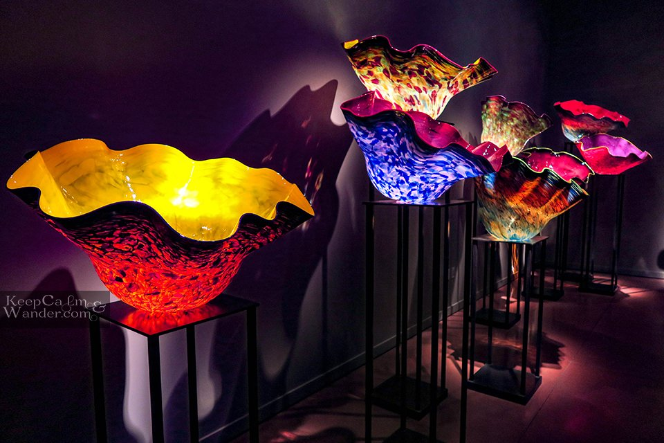 Macchia Forest - Chihuly Garden and Glass Seattle.