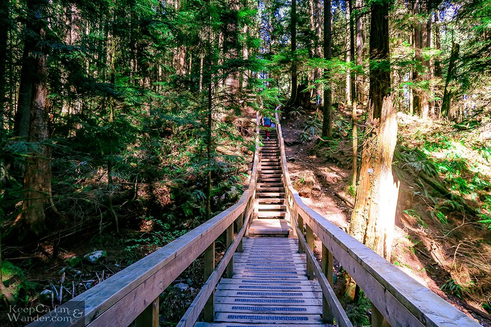 Wooden bridges and stairs on the hiking trail (Deep Cove).
