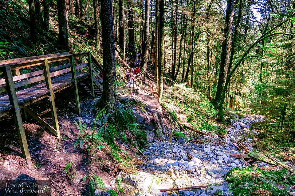 hiking trail wooden stairs deep cove