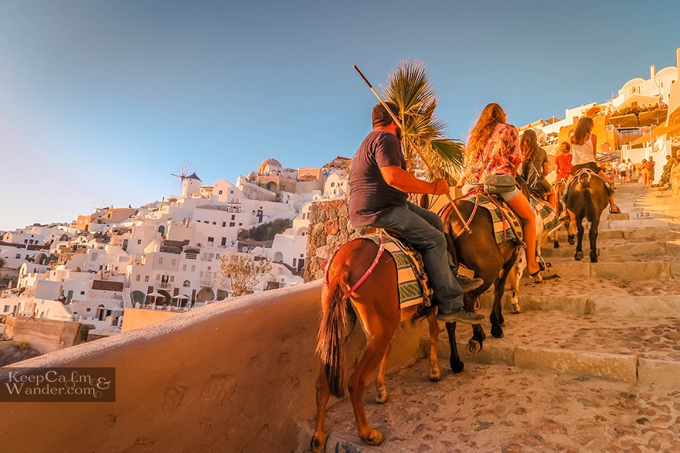 Santorini tourist on donkeys oia