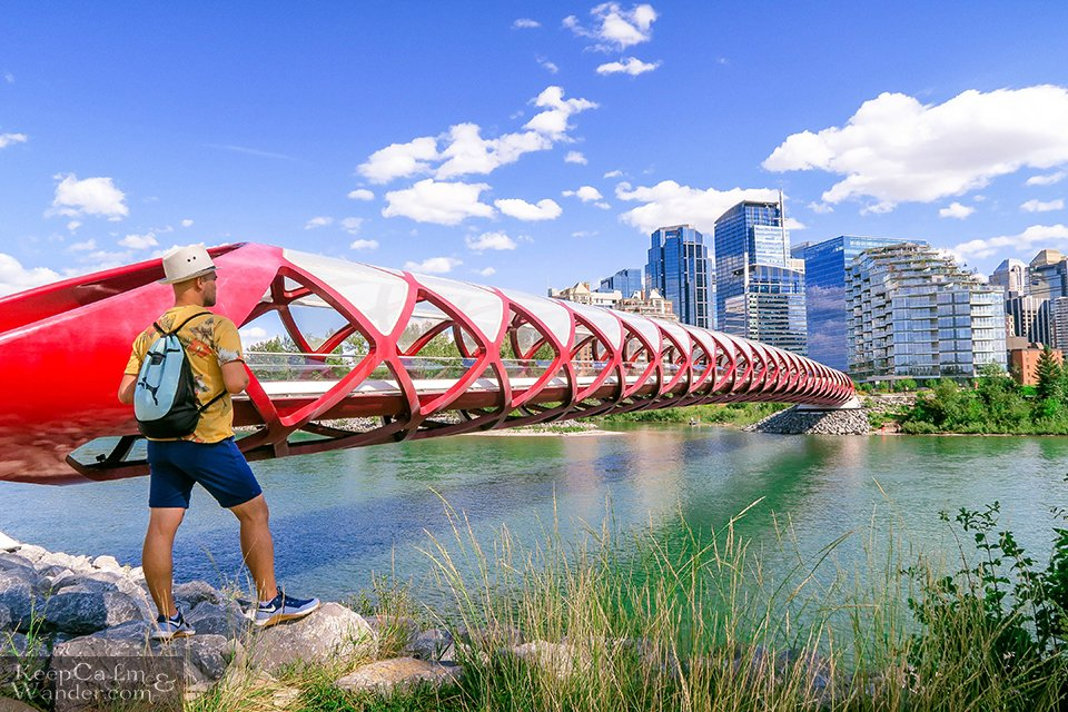 Peace Bridge in Calgary Things to do Hotel Hostel