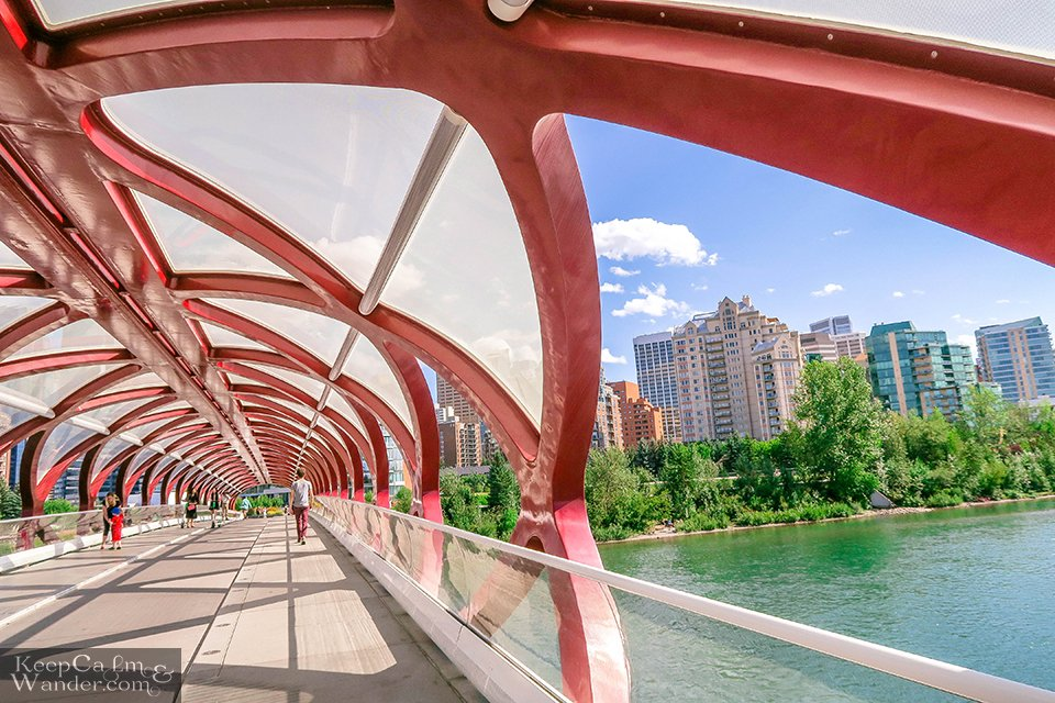 Things to do in Calgary Hotel Hostel